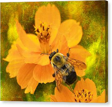 Buzzy The Honey Bee Canvas Print by J Larry Walker