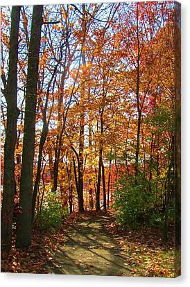 Caesar's Path Canvas Print by Vijay Sharon Govender