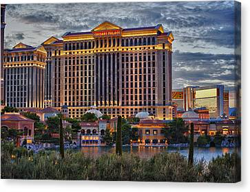 Caesars Canvas Print by Stephen Campbell