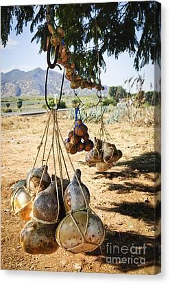 Calabash Gourd Bottles In Mexico Canvas Print by Elena Elisseeva
