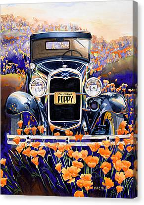 California Poppy Canvas Print by Mike Hill