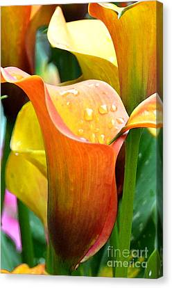 Calla Painting Canvas Print by Pravine Chester