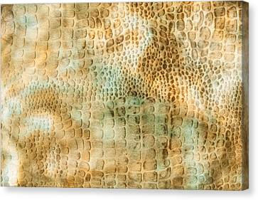 Camouflage Background Canvas Print by Tom Gowanlock