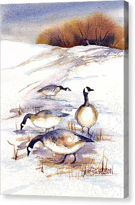 Canada Geese In Stubble Field Canvas Print by Peggy Wilson