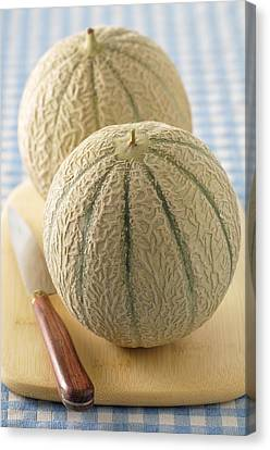 Cantaloupes On Cutting Board Canvas Print by Jean-Christophe Riou