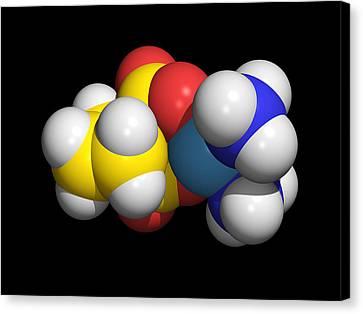 Carboplatin Molecule, Cancer Drug Canvas Print by Dr Tim Evans