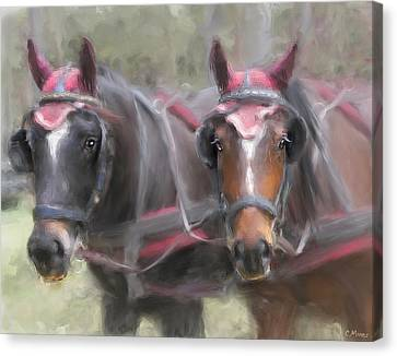 Carriage Horses Pleasure Pair Canvas Print by Connie Moses
