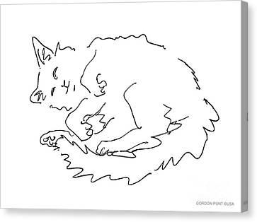Cat-drawings-black-white-1 Canvas Print by Gordon Punt