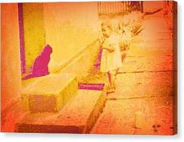 Cat Watching Canvas Print by Li   van Saathoff