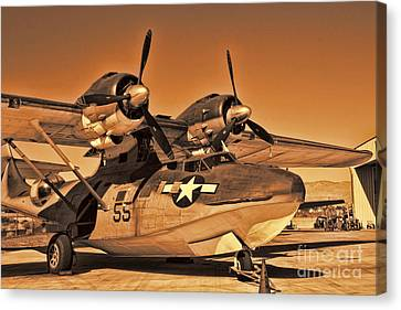 Catalina Canvas Print by Tommy Anderson