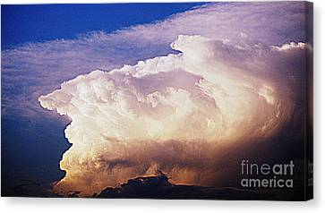 Catch The Wave Canvas Print by Paul  Wilford