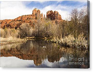 Cathedral Rock Reflections Landscape Canvas Print by Darcy Michaelchuk