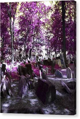Cementerio Judio Canvas Print by Luis oscar Sanchez