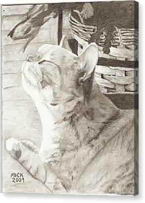 Cepheus Canvas Print by Mick Hogan