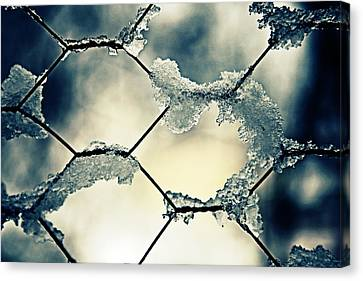 Chainlink Fence Canvas Print by Joana Kruse