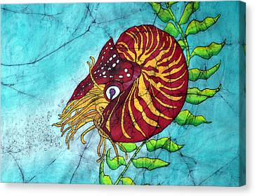 Chambered Nautilus Canvas Print by Shari Carlson