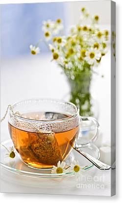 Chamomile Tea Canvas Print by Elena Elisseeva