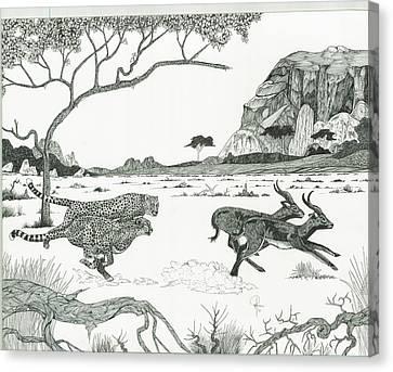 Cheetah Twins  Canvas Print by Doug Hiser