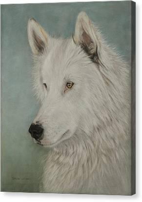 Chenoa Canvas Print by Teresa LeClerc