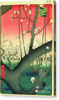 Cherry Blossoms Canvas Print by Roberto Prusso