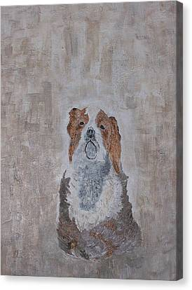 Chiari Dog Canvas Print by Roy Penny