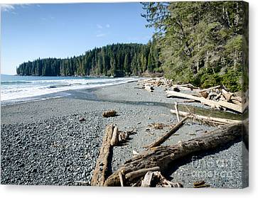 China Wide China Beach Juan De Fuca Provincial Park Vancouver Island Bc Canada Canvas Print by Andy Smy