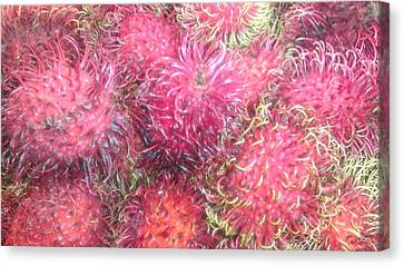Chinese Plums  Canvas Print by Paul SEQUENCE Ferguson             sequence dot net