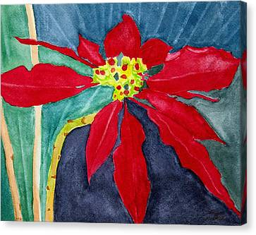 Christmas Flower Canvas Print by Charlotte Hickcox