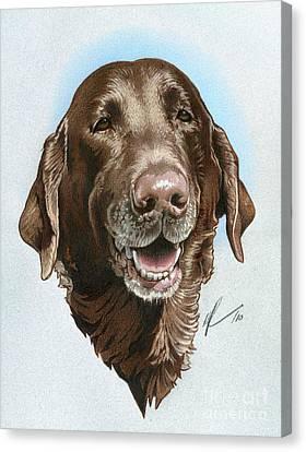 Chubbs Canvas Print by Marshall Robinson
