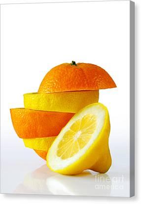Citrus Slices Canvas Print by Carlos Caetano