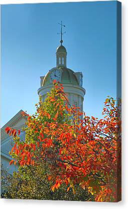 City Hall Dome And Tree  Canvas Print by Steven Ainsworth