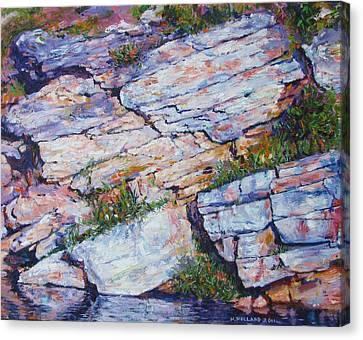 Cliff At Montlake Canvas Print by Herschel Pollard