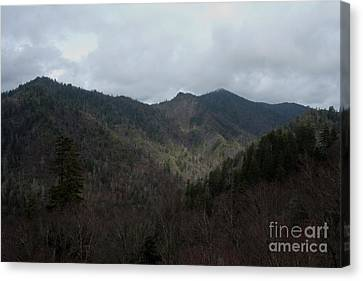Cloudy Mountain Canvas Print by Michael Waters