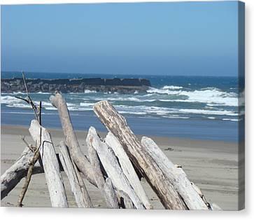 Coastal Driftwood Art Prints Blue Sky Ocean Waves Canvas Print by Baslee Troutman