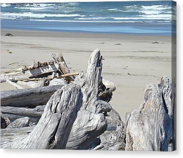 Coastal Driftwood Art Prints Blue Waves Ocean Canvas Print by Baslee Troutman