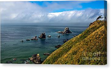 Coastal Look Canvas Print by Robert Bales
