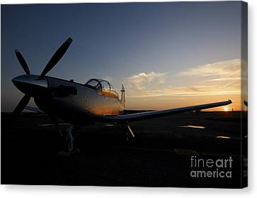 Cob Speicher, Iraq - An Iraqi Airforce Canvas Print by Terry Moore