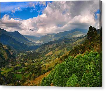 Cocora Valley Canvas Print by Skip Hunt