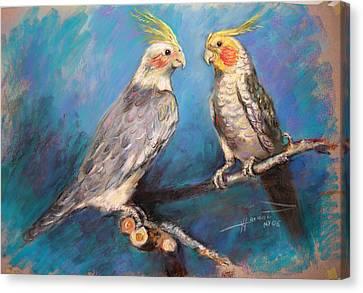 Coctaiel Parrots Canvas Print by Ylli Haruni