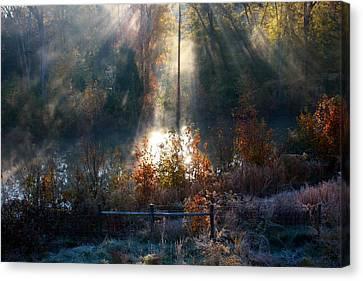 Cold Mist Iv Canvas Print by Michael Tipton