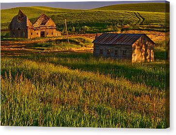 Collapsed Canvas Print by Dan Mihai