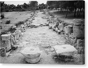 Colonnaded Street In The Ancient Site Of Salamis Famagusta Turkish Republic Of Northern Cyprus Trnc Canvas Print by Joe Fox