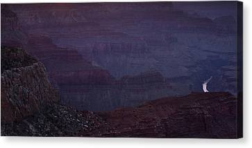 Colorado River At The Grand Canyon Canvas Print by Andrew Soundarajan