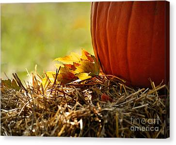 Colorful Autumn Canvas Print by Nava Thompson