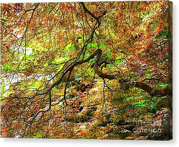 Colorful Maple Leaves Canvas Print by Carol Groenen
