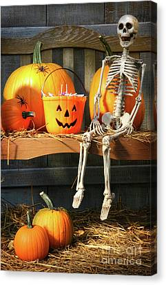 Colorful Pumpkins And Skeleton On Bench Canvas Print by Sandra Cunningham