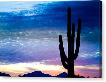 Colorful Southwest Desert Sunrise Canvas Print by James BO  Insogna