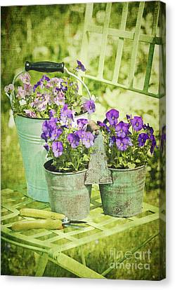 Colorful Spring Flowers On Garden Chair Canvas Print by Sandra Cunningham