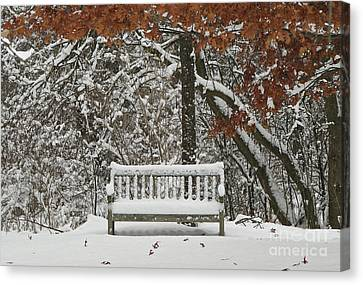 Come Sit Awhile Canvas Print by Inspired Nature Photography Fine Art Photography