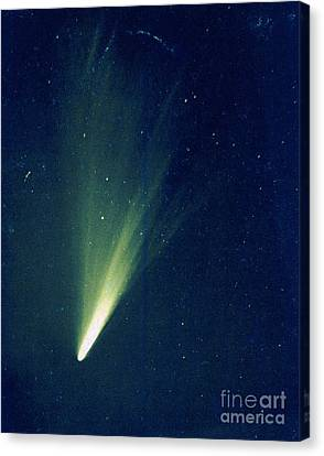 Comet West, 1976 Canvas Print by Science Source
